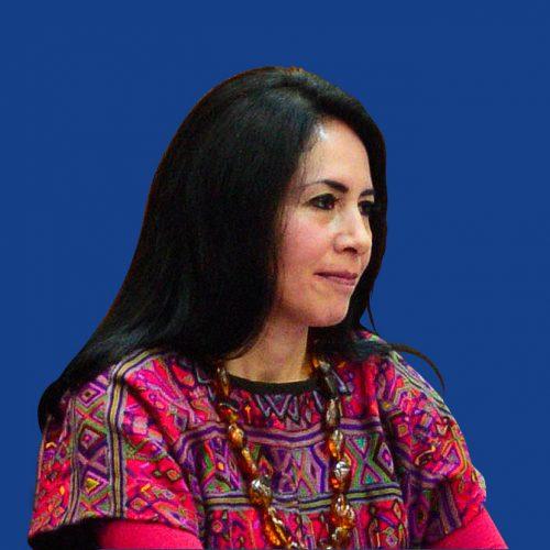 Irasema Alcántara Ayala