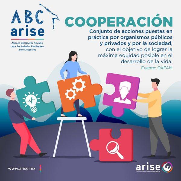 ABC-Arise-Cooperacion